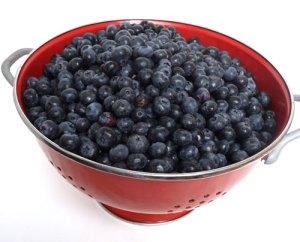 BlueberriesButternut